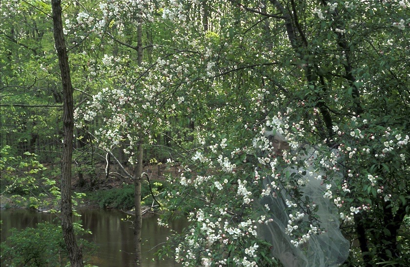 Apple Blossom Bride // Place