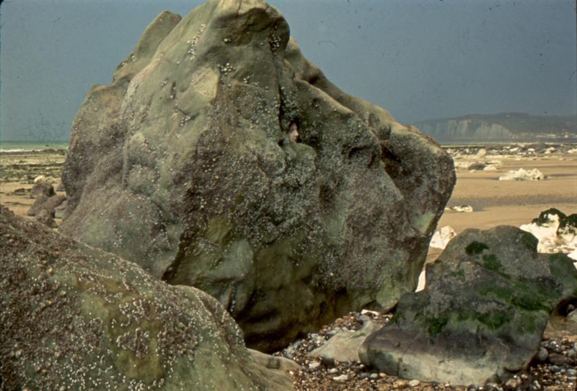 Big Rock // Normandy, France