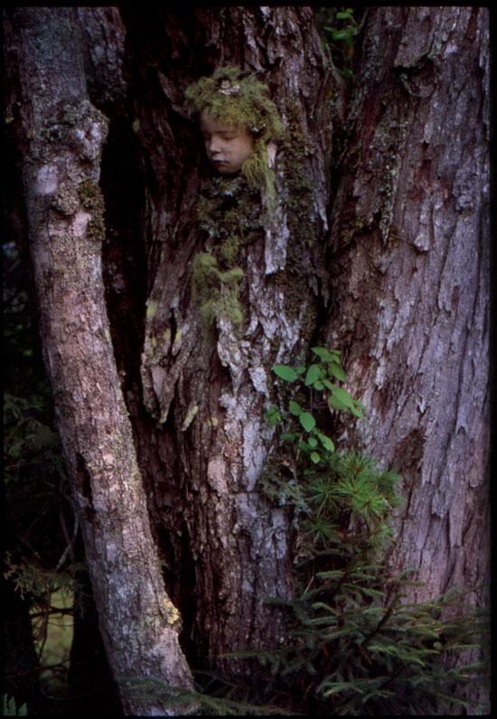 Little Tree Angel // Place