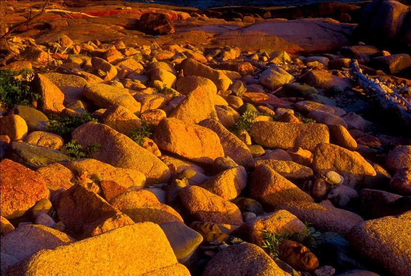 Sunset Goose Cove // Maine