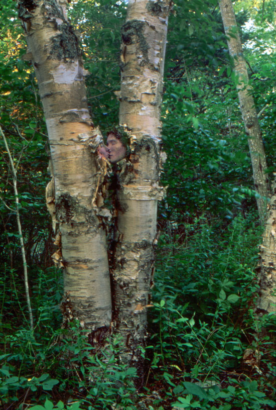 Birch Lovers 2 // Place